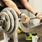 Biceps Curlbank-100635451
