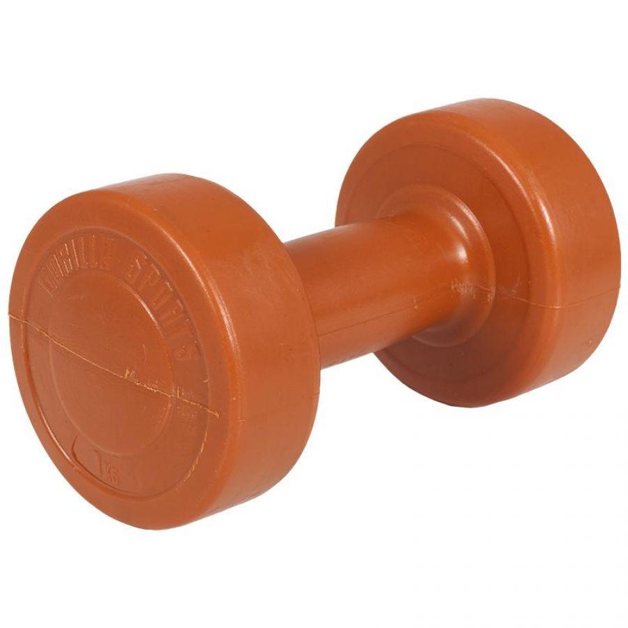 Kunststof Aerobic Halter 1 kg